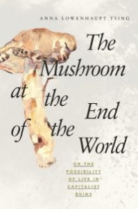 Cover of The Mushroom at the End of the World by Anna Lowenhaupt Tsing